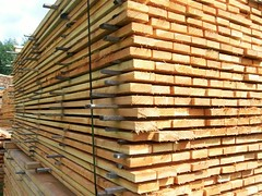 Softwood Timber ? Choosing the Right Timber