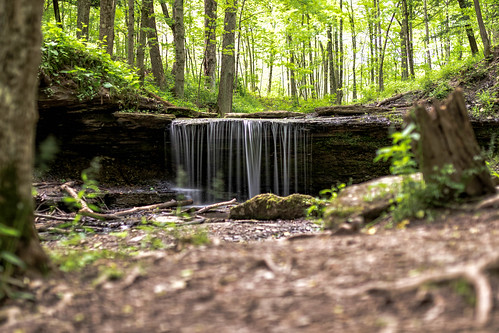 natural landscape sigma woods water western cabin canon waterfall 7dmkii pennsylvania settlers pa sigma35mmart green canon7dmkii nature