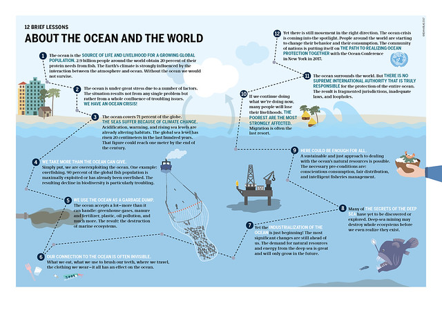 Graph: Ocean Atlas 2017, Petra Böckmann/Heinrich Böll Foundation