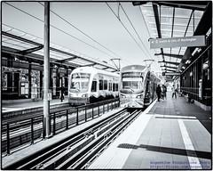 Two @SoundTransit Link Trains at Mount Baker Station