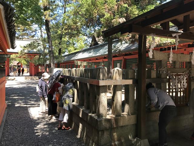 sumiyoshitaisya96