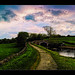 The Towpath by Kev Walker ¦ From Manchester
