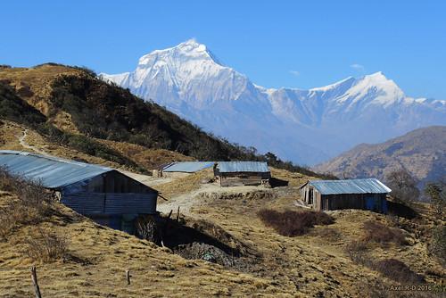 bâtiment dhaulagiri montagnes nepal tukcheri village