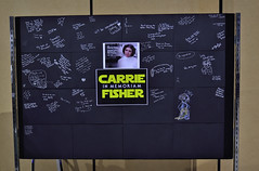 Carrie Fisher - We Miss You