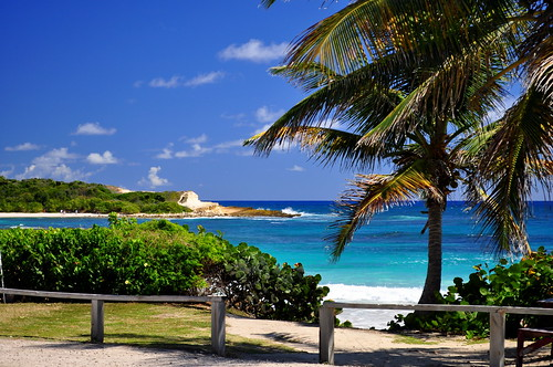 charlottehbest 2017 february antigua island caribbean water coast sea blue turquoise beautiful antiguabarbuda islandlife holiday paradise palm palmtrees picturepostcard halfmoonbay