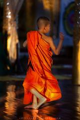 _MG_9308-le-25_04_2016_wat-thail-wattanaram-maesot-thailande-christophe-cochez-w