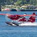 C-FODH - Harbour Air - DHC-3 Turbine Otter