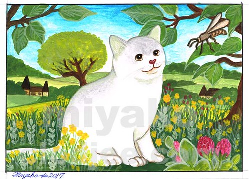 White Cat with a Wasp in the Countryside