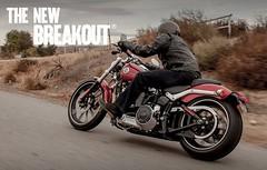 Harley-Davidson 1690 SOFTAIL BREAKOUT FXSB 2013 - 4