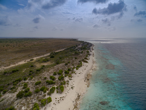 amazing nature allgemein caribbean sea tauchen natur aerial photography kamera summer drone ocean strandurluab kreuzfahrt drohne reisen luftbild länderstädte sommer photo curacao cruise phantom dronesdaily outdoor caraïben curaçao ferien reise sun beach underwater holiday strand bonaire geotagged karibik diving island dive insel travel dji