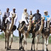 UNAMID-organized camel race in  Ed Alfirsan, South Darfur