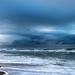 Moody blues by carogray1