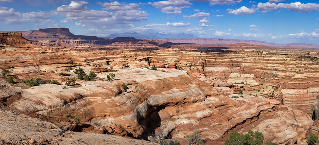 A Maze of Rock and Canyons