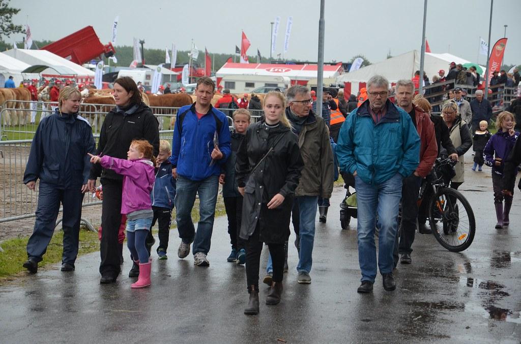 Gæster på Landsskuet 2017 torsdag