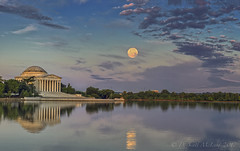 Strawberry Moon setting at the Tidal Basin this morning