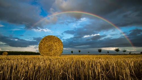 Alsace 2016 - Rainbow