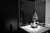 Irving Penn's Rolleiflex (The MET - Irving Penn Centennial)