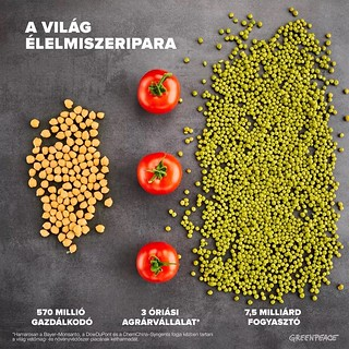 A világ élelmiszeripara