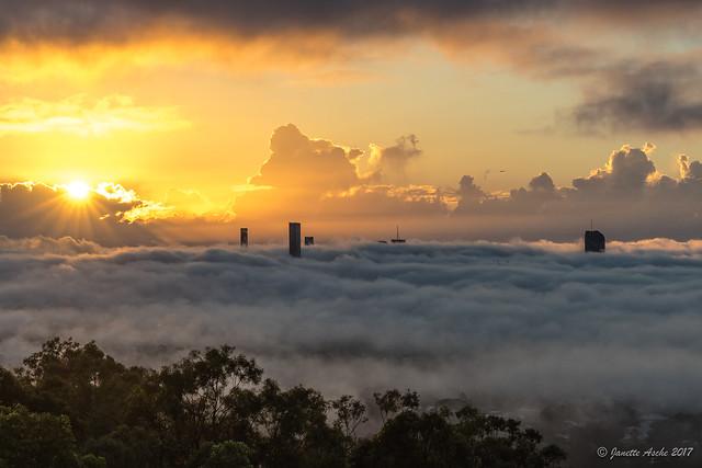 Brisbane foggy sunrise today