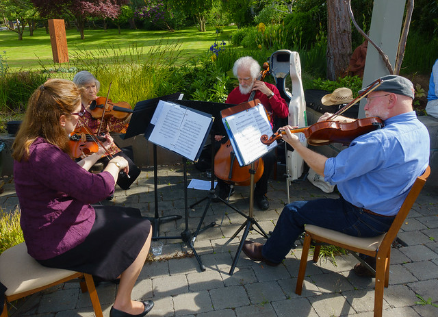 The North Beach Quartet plays a gig
