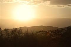 The Warm African Sun