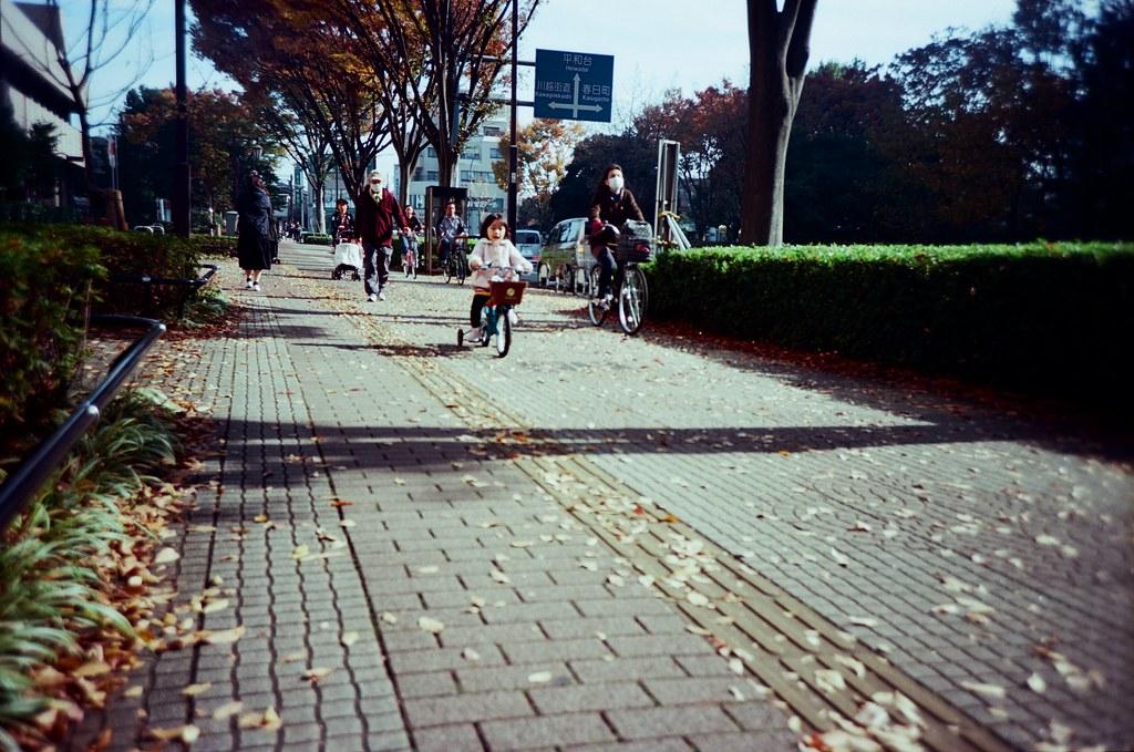 光が丘 Tokyo, Japan / Kodak Pro Ektar / Lomo LC-A+ 迎面而來的人,與迎面來了的狗!  我蹲下來按快門,白色那隻想要撲過來我這裡!  Lomo LC-A+ Kodak Pro Ektar 100 7941-0009 2016-11-20 Photo by Toomore