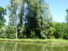 RNR de l'Escaut Rivière (30)