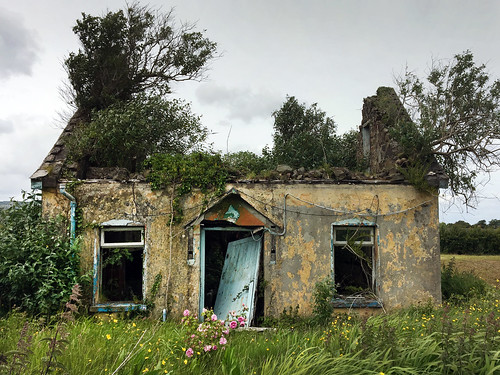 decay rural rose vacantlot cottage newcastlewest countylimerick ireland abandoned stephenking darktower week232017 52weeksthe2017edition weekstartingsundayjune42017