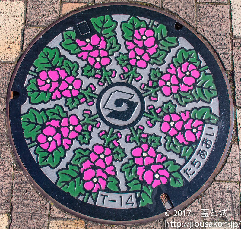 shizuoka-manhole-8