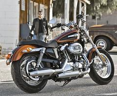 Harley-Davidson XL SPORTSTER 1200 CUSTOM 2017 - 10
