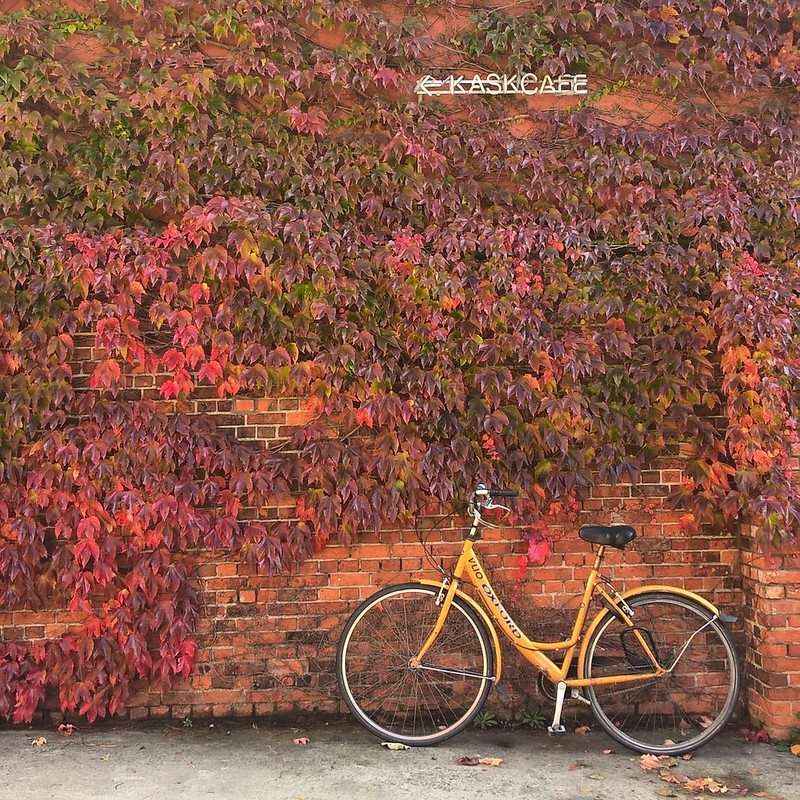 Bici en Gante