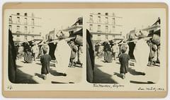 The Market, Algiers