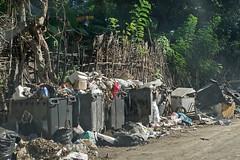 Sur la route des Badamiers (Labattoir, Mayotte)