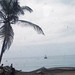 Small photo of Fishing nets and oil palm, Accra City