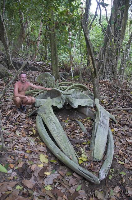 naturist 0019 Corcovado, Costa Rica