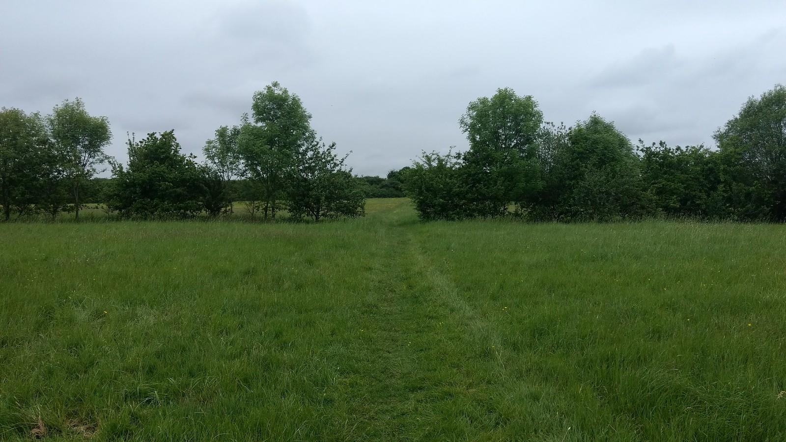 Towards Kingsbury