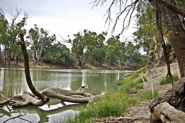 Monoman creek