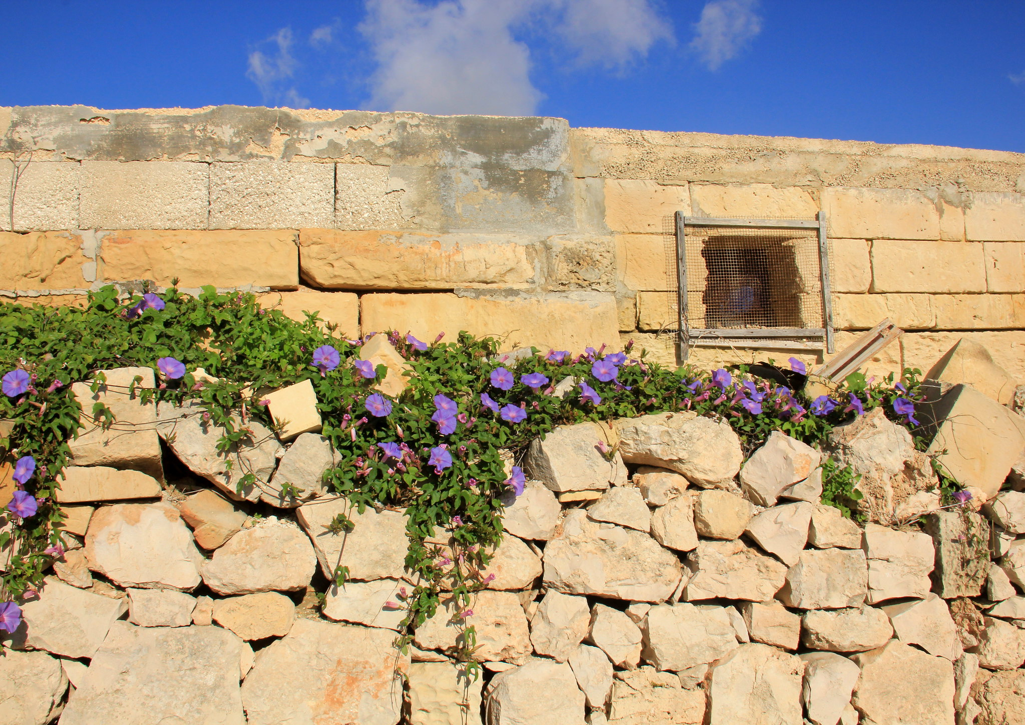A little village homestay can be very relaxing when you visit Malta
