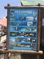 El Oceanario, Isla de San Martín de Pajarales, Cartagena, Colômbia.