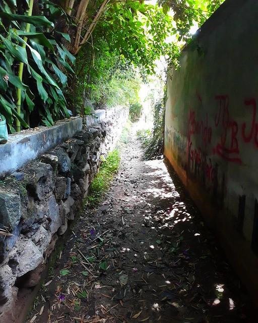 Wandering San Pedro's back alleys... #locationindependent #guatemala #2daysleft #exploring