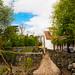 Small photo of A beautiful backyard in Alloway