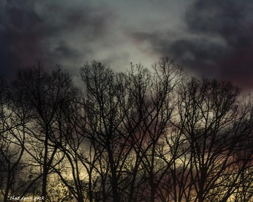 nature dawn sunrise