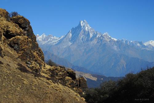 machhapuchhre montagnes muldhai nepal