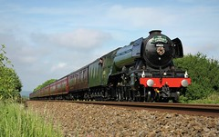 Canon EOS 60D & PicMonkey -  The Flying Scotsman - 2