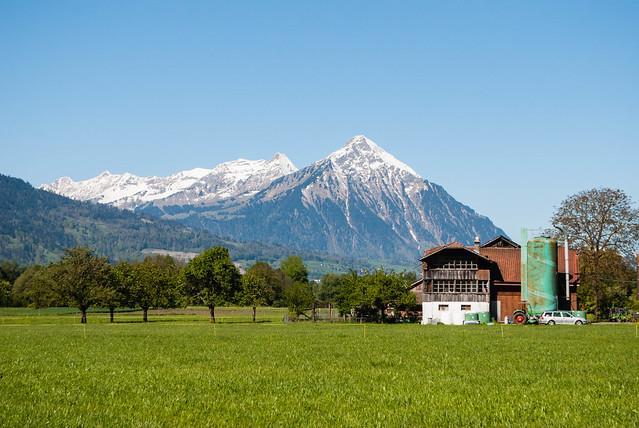 2017 05 - Suiza-55.jpg
