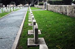 2017 Memorial Day POM Cemetery