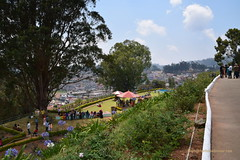 View from the Government Rose Garden, Ooty