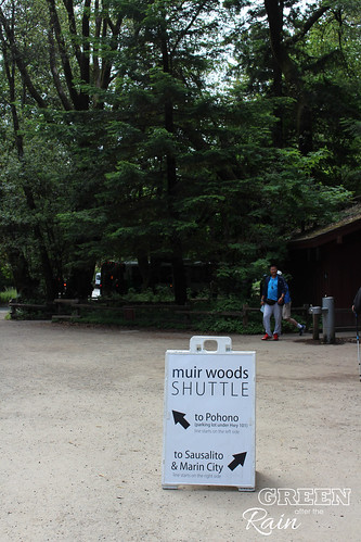 170528d Miur Woods _017