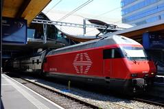 Bern-53