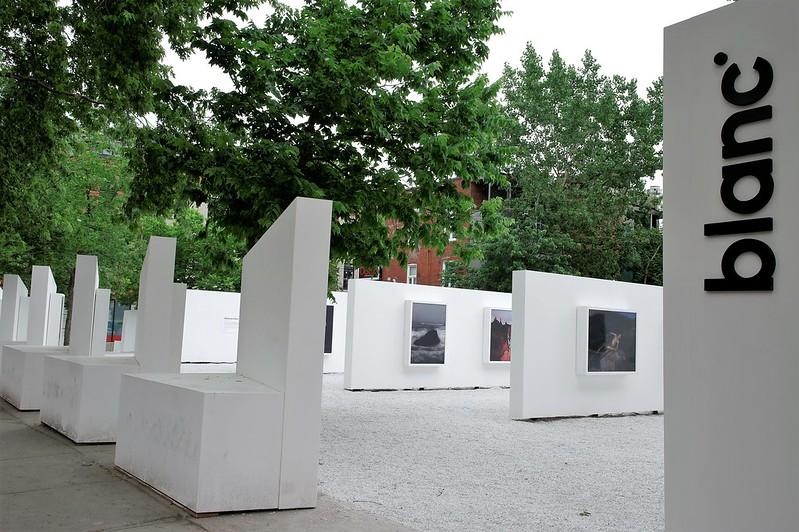 Delaney Allen, Benoit Paillé, Synchrodogs et Valérie Blass, Galerie blanc, 2017.